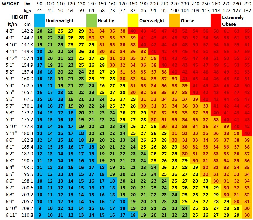 Bmi Chart Bmi Calculator