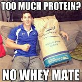 Too much Protein? No Whey Mate