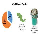 World Food Waste